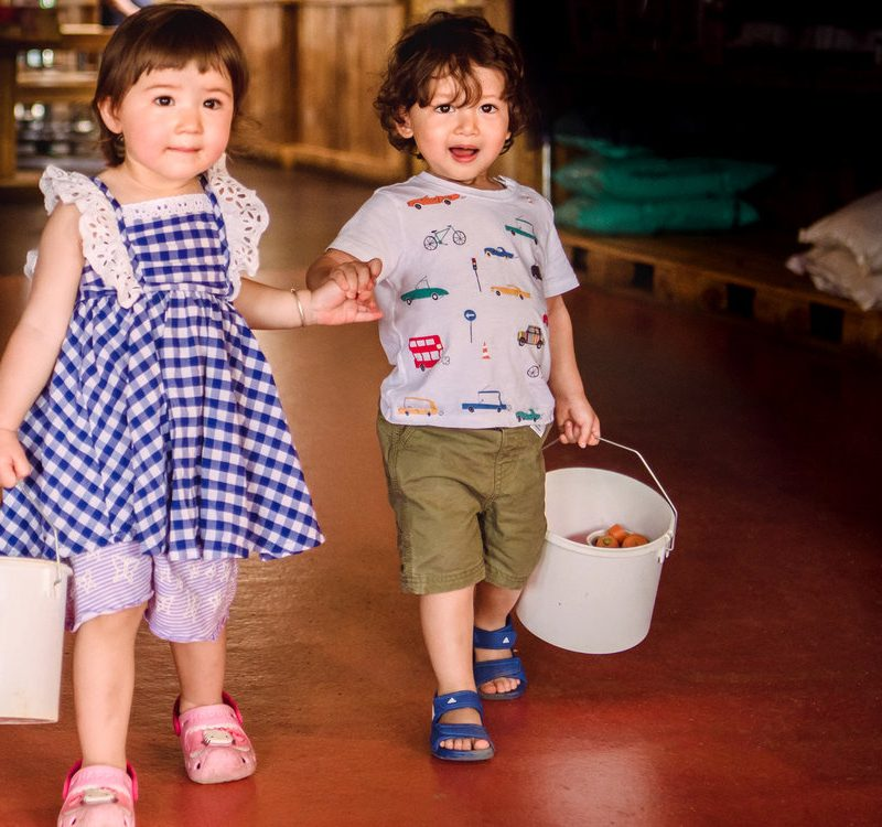 Toddlers holding hands as they explore mini meadows farm in The UK.