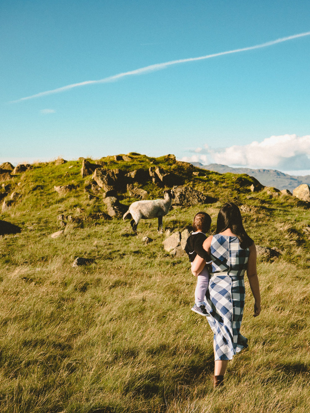 The hills of the Lake District were covered with sheep. A treat for a traveling baby.