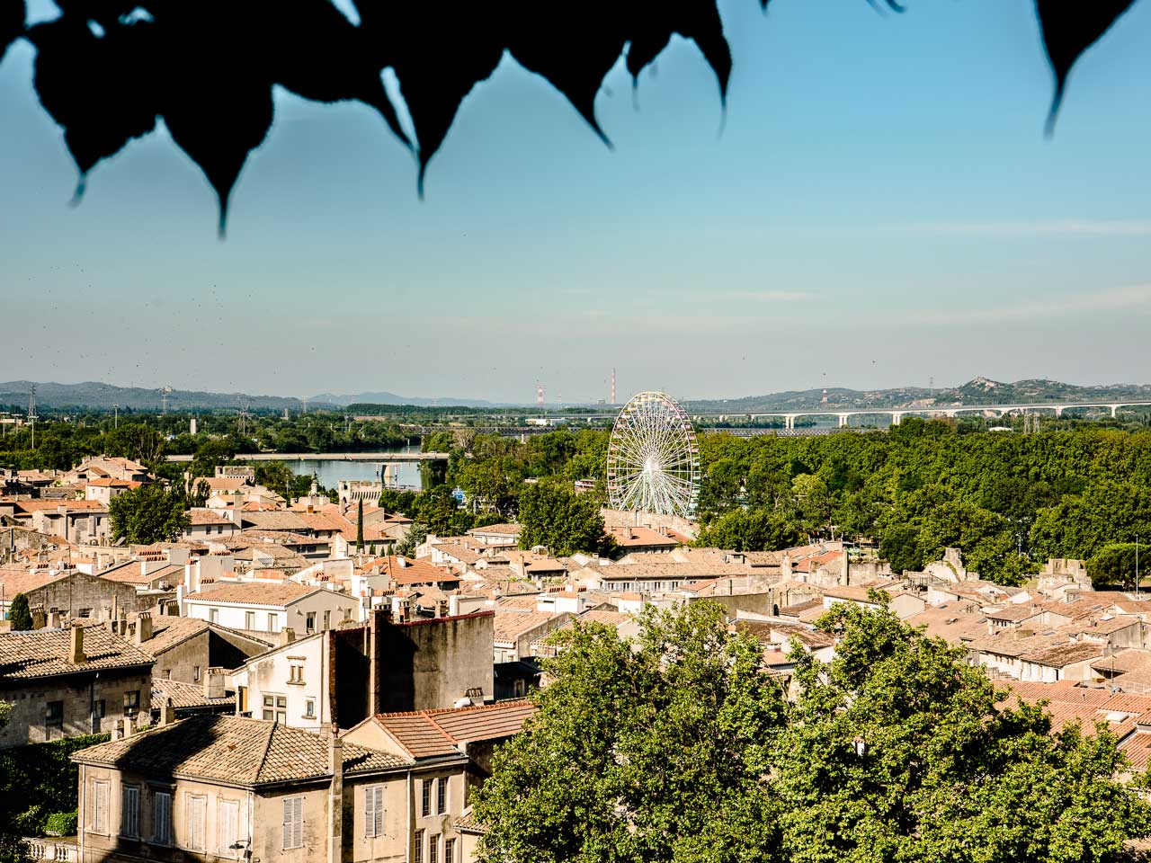 The rocher des doms has a great view of the skyline of Avignon France.