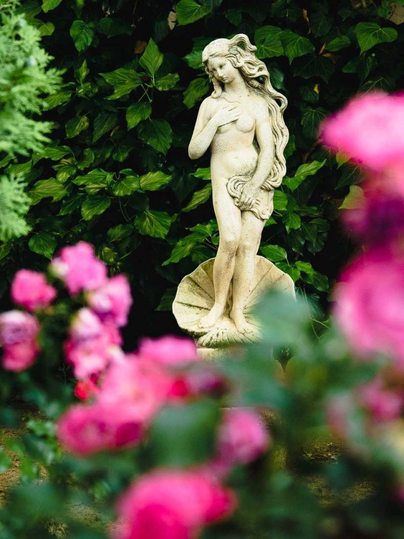 beautiful flowers and statues in the hotel garden in Valensole, France.