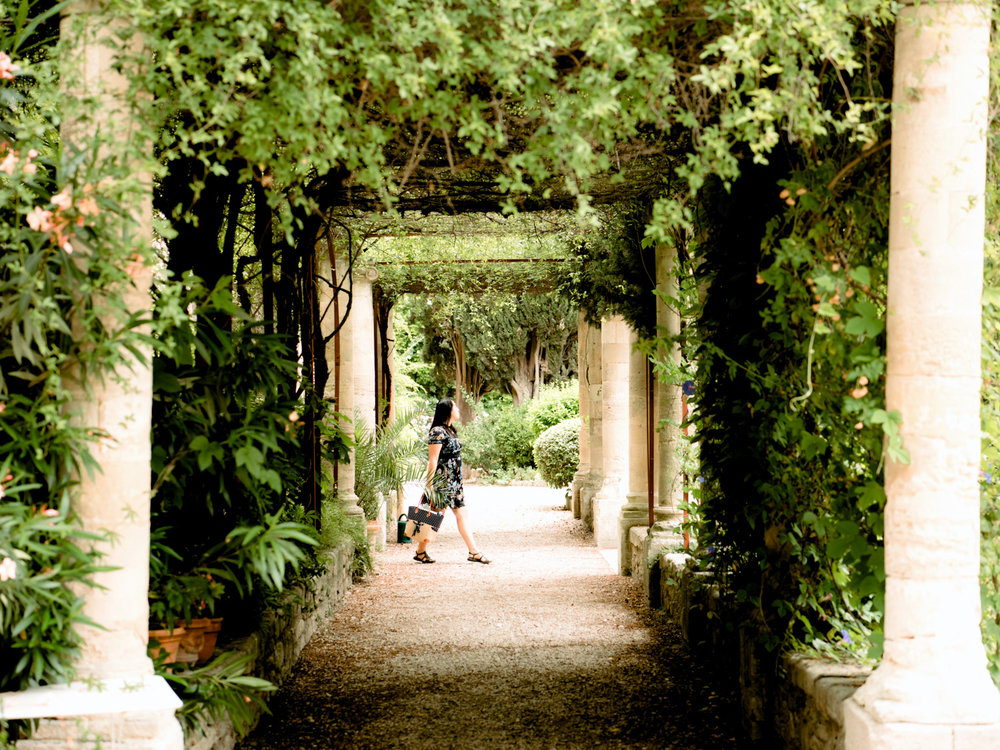 Amazing archway covered in vines in the gardens of Fort Saint-Andre