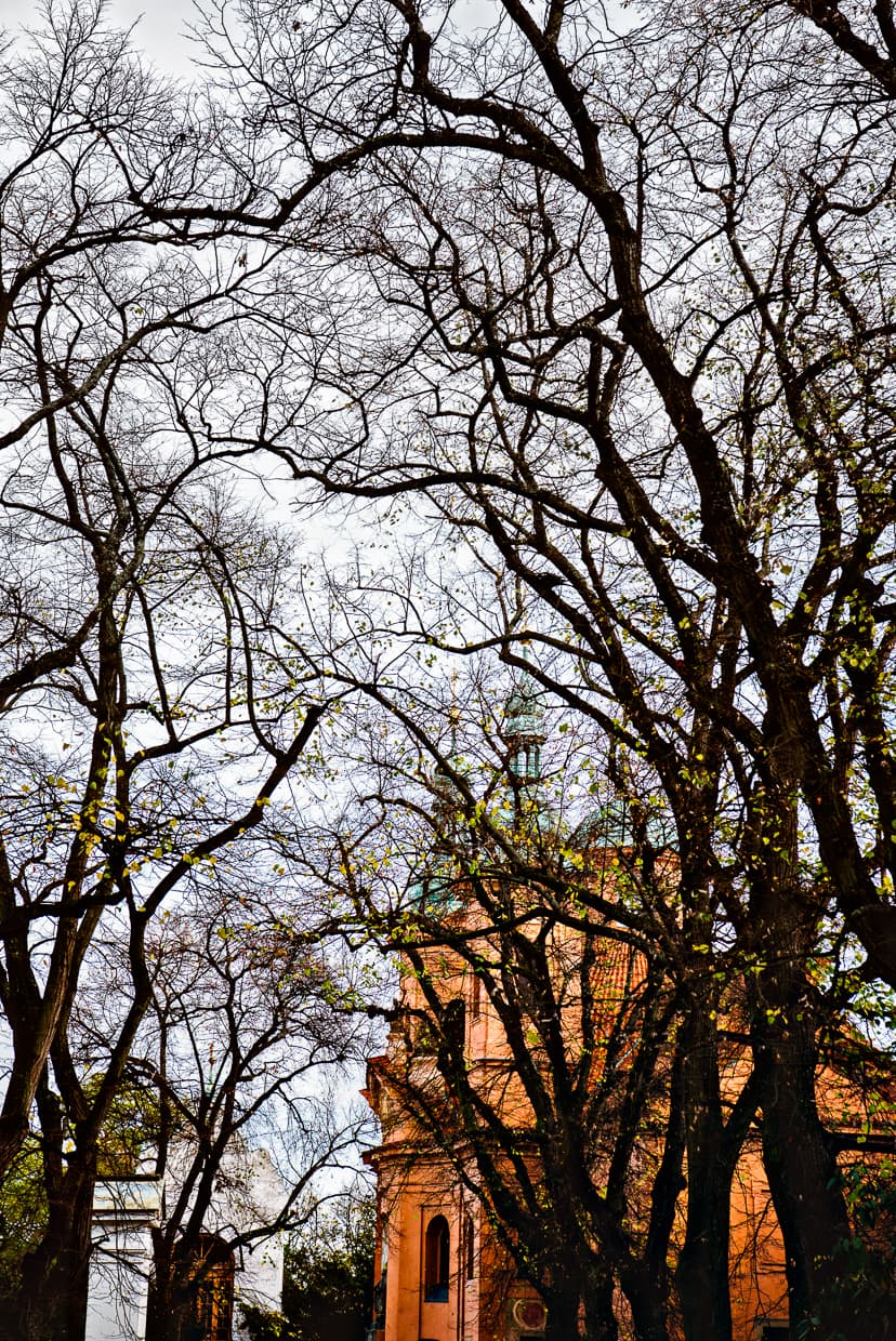Some church shot through the bare branches in Petrin Park in Prague.