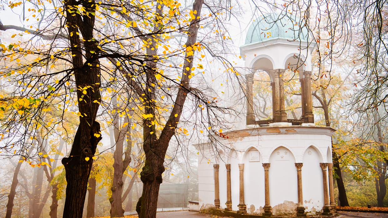 Fall foliage at Petrin Park in Prague on a foggy day.