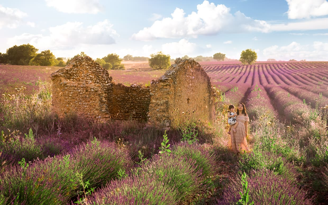 A ruined house in Valensole, France surrounded by a lavender field.