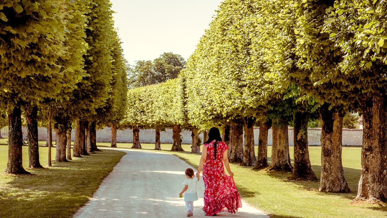 In front of Chateau de Chambord, walking by rows of trees.