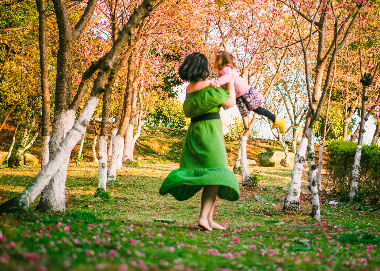 Dancing on Cherry Blossom petals .