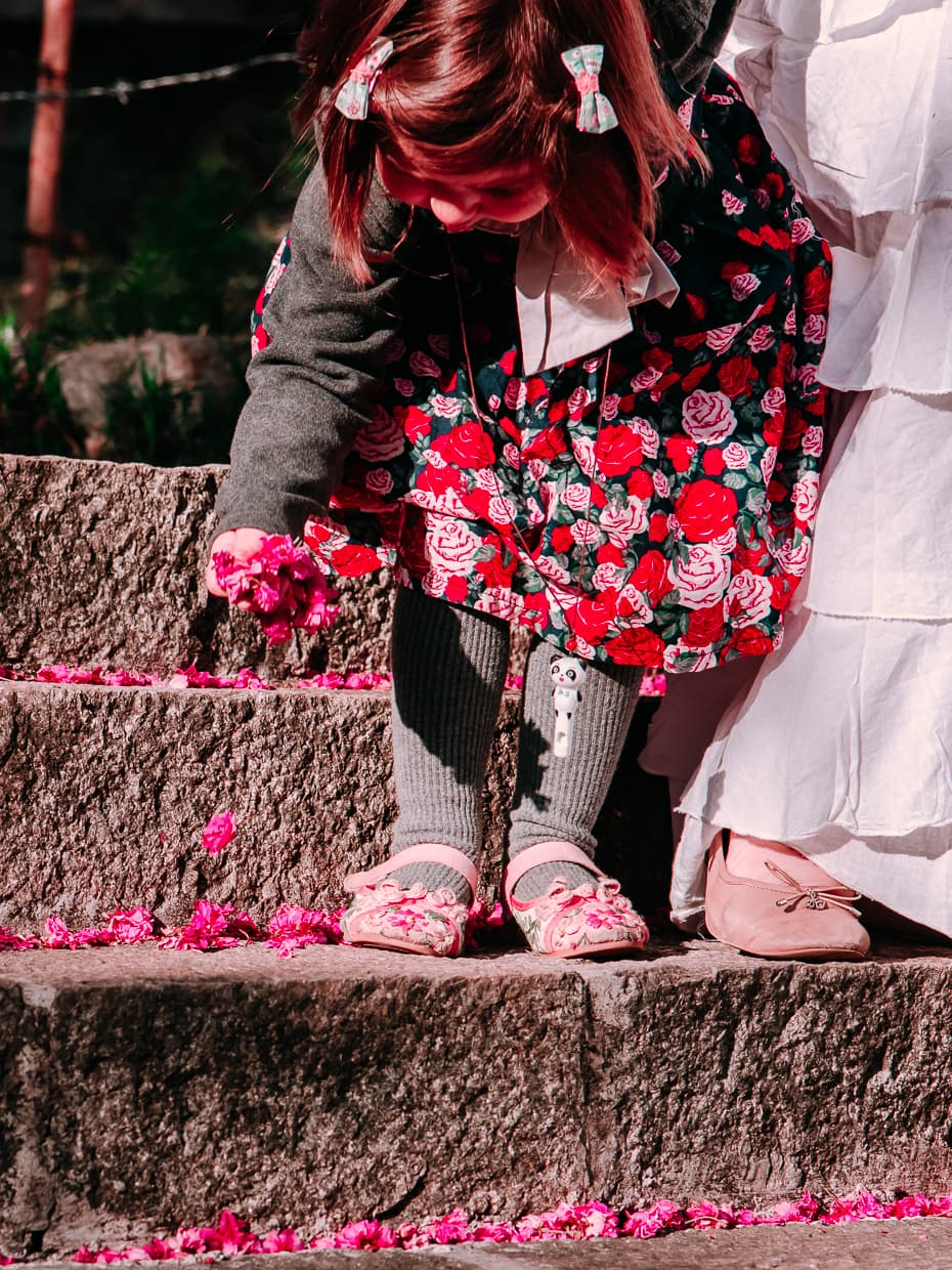 Cherry Blossom petals on the stairs in Dali, China.