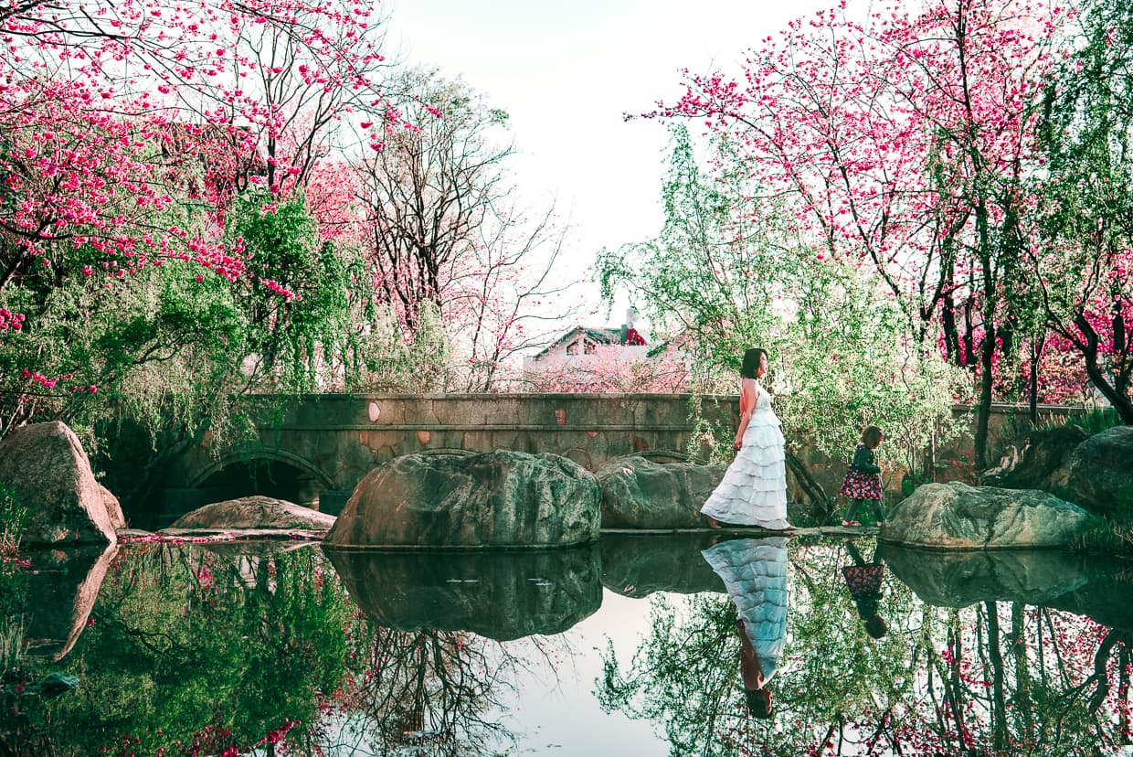 Photographing the Cherry Blossom Valley of Dali, China | Jake and Dannie