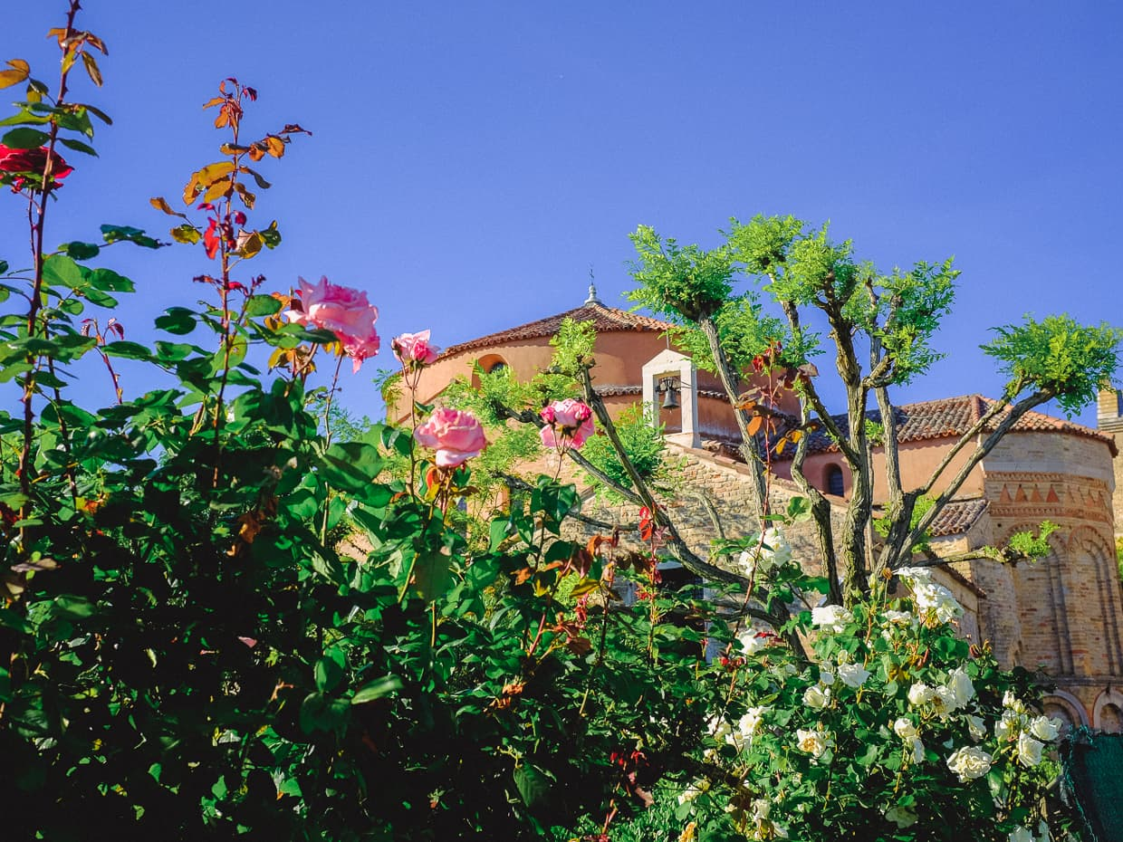 Flowers in front of the Church of Santa Fosca, from our Venice daytrip to Torcello.