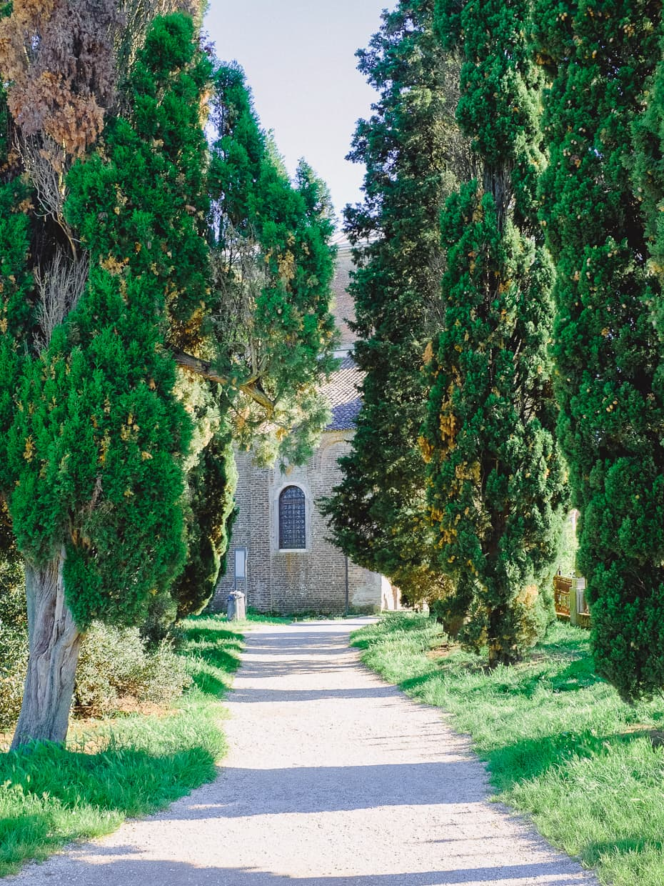 A path on our day trip to Torcello from Venice, Italy.