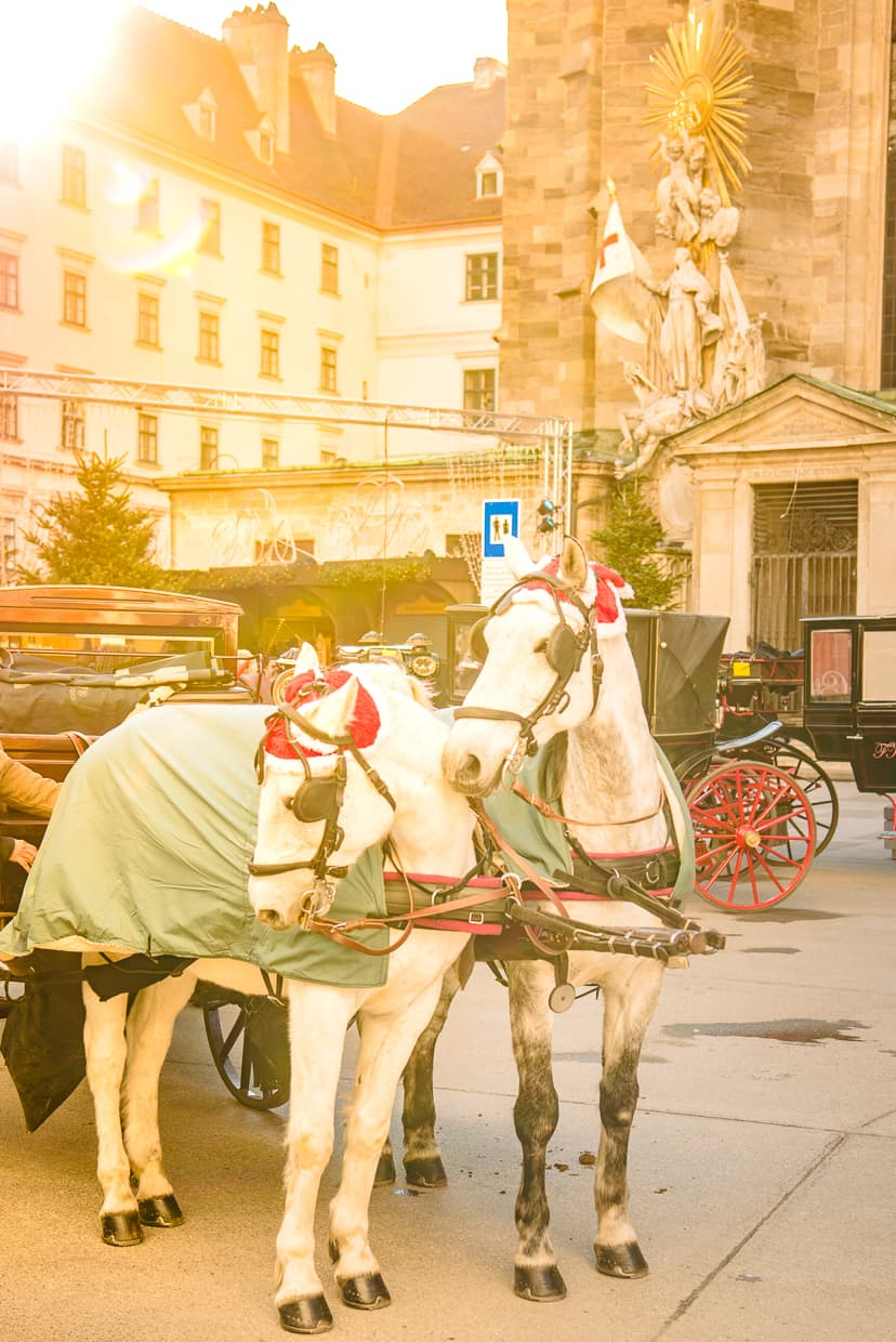 Christmas carriage rides in Vienna, Austria.