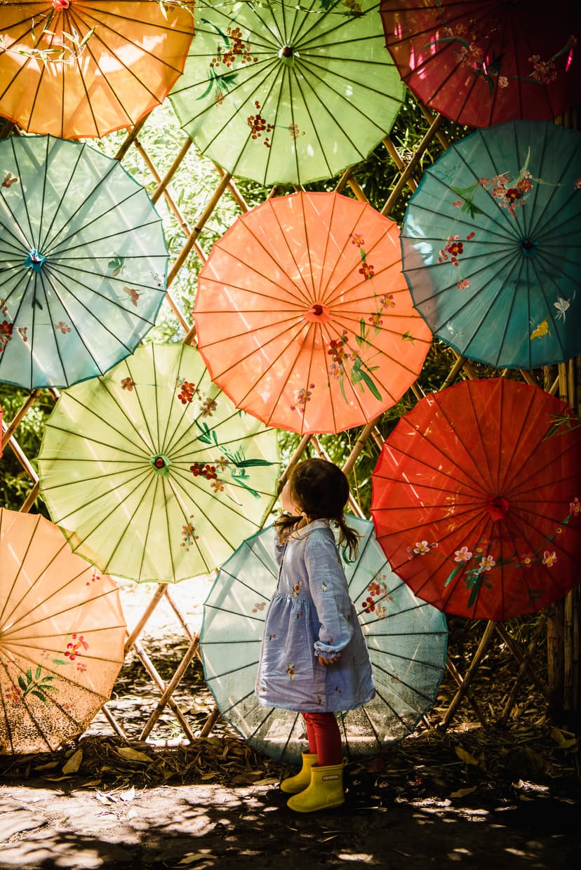 Colorful paper umbrellas.
