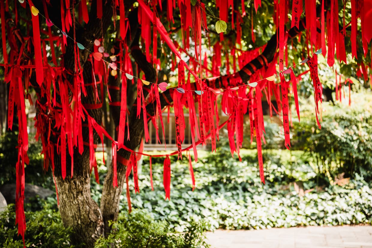 A tree covered with ribbons in the Yunnan Ethnic Village.