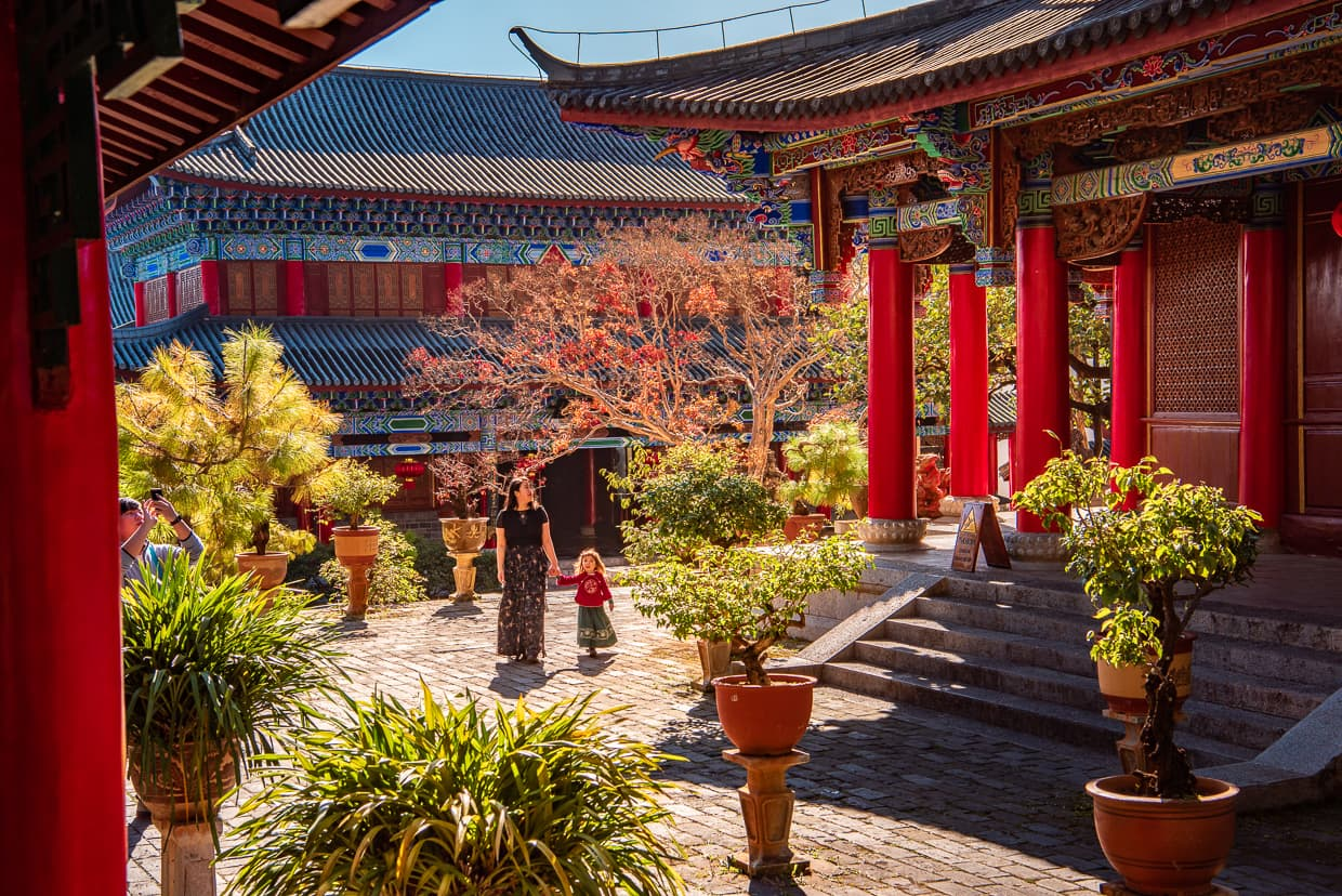 Leaves changing color in Mufu Palace courtyard. Lijiang, China.