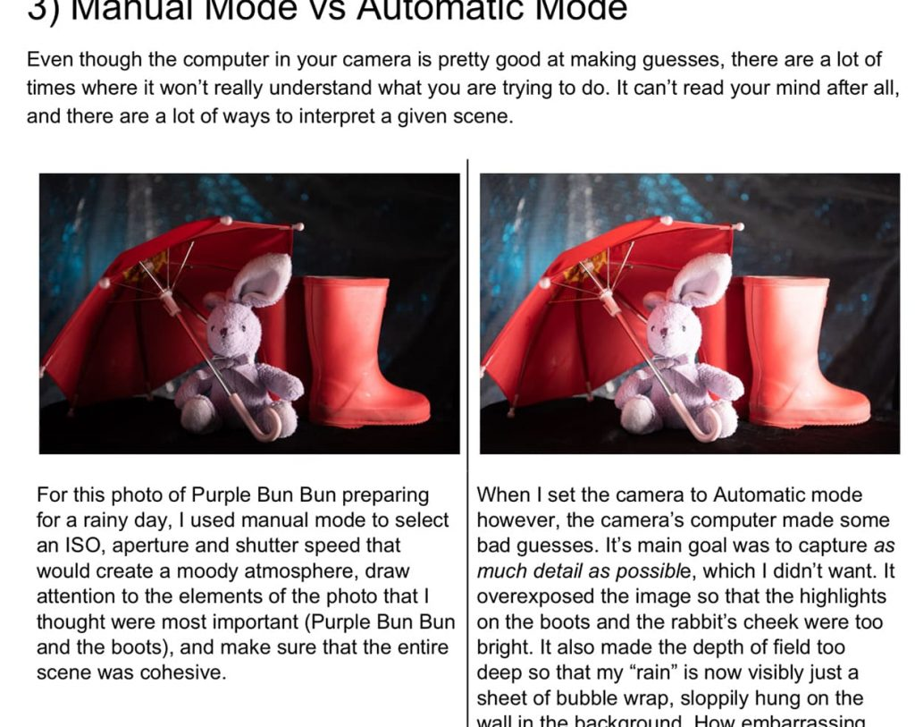 An excerpt from Easy Manual Mode Photography E-book by Jacob Littlefield demonstrating the difference between automatic and manual mode.