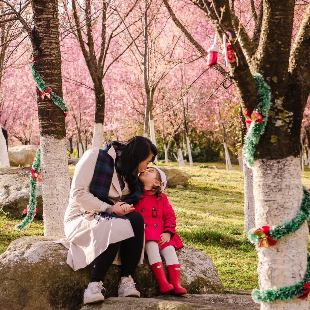 Mother and daughter kissing in Christmas photo under cherry blossom trees.