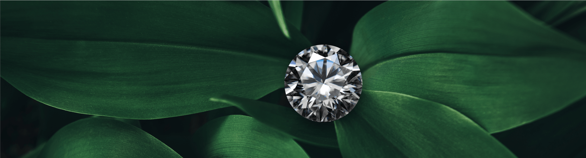 Yadav Offers Ethical and Affordable Lab Diamonds