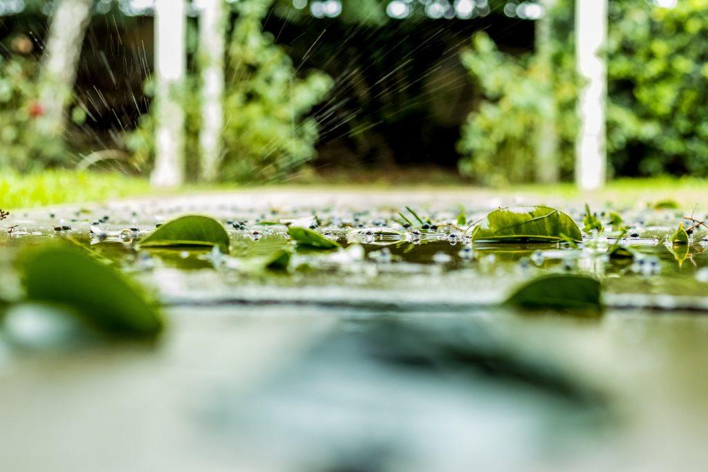RaindropSplashonLeaf-pixrly.com