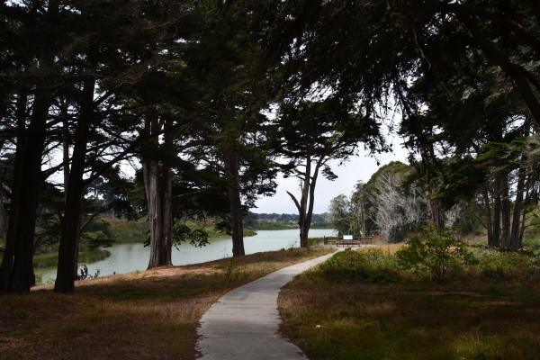 lake merced picnic venue san francisco