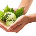 sustainable-event-planning-tips-san-francisco