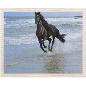 meSleep Canvas without frame - Horse on Water pcvs-01-0053