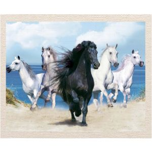 meSleep Canvas without frame - White Horse pcvs-01-0079