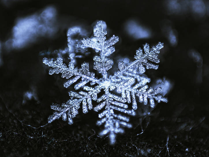 unique as a snowflake