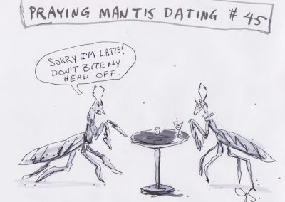 Praying Mantis Dating