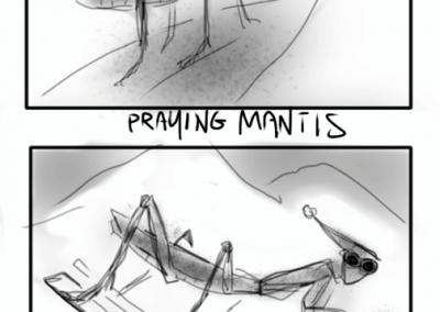 skiing mantis1a