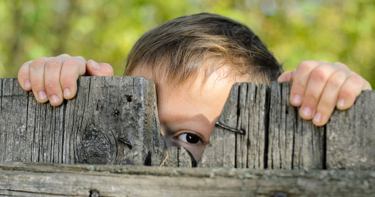 little boy peeking through a weathered wooden fence