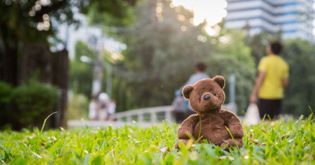 brown teddy bear in grass in front of city office buildings