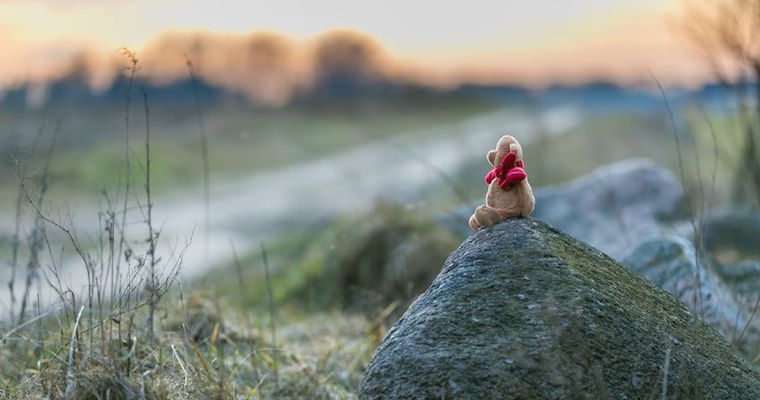 sad teddy bear miserable on rock