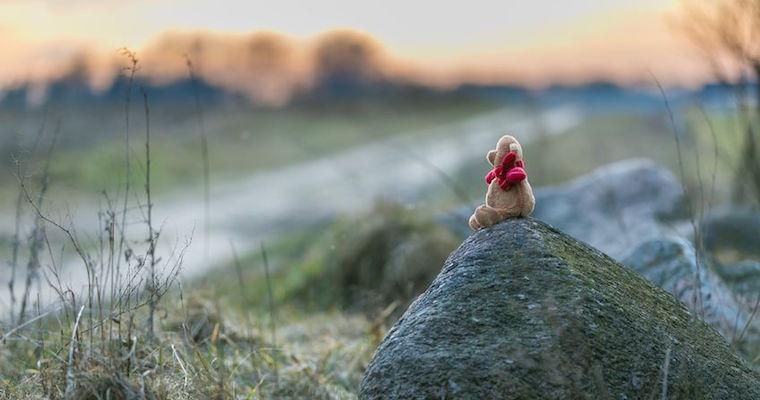 sad teddy bear miserable on rock