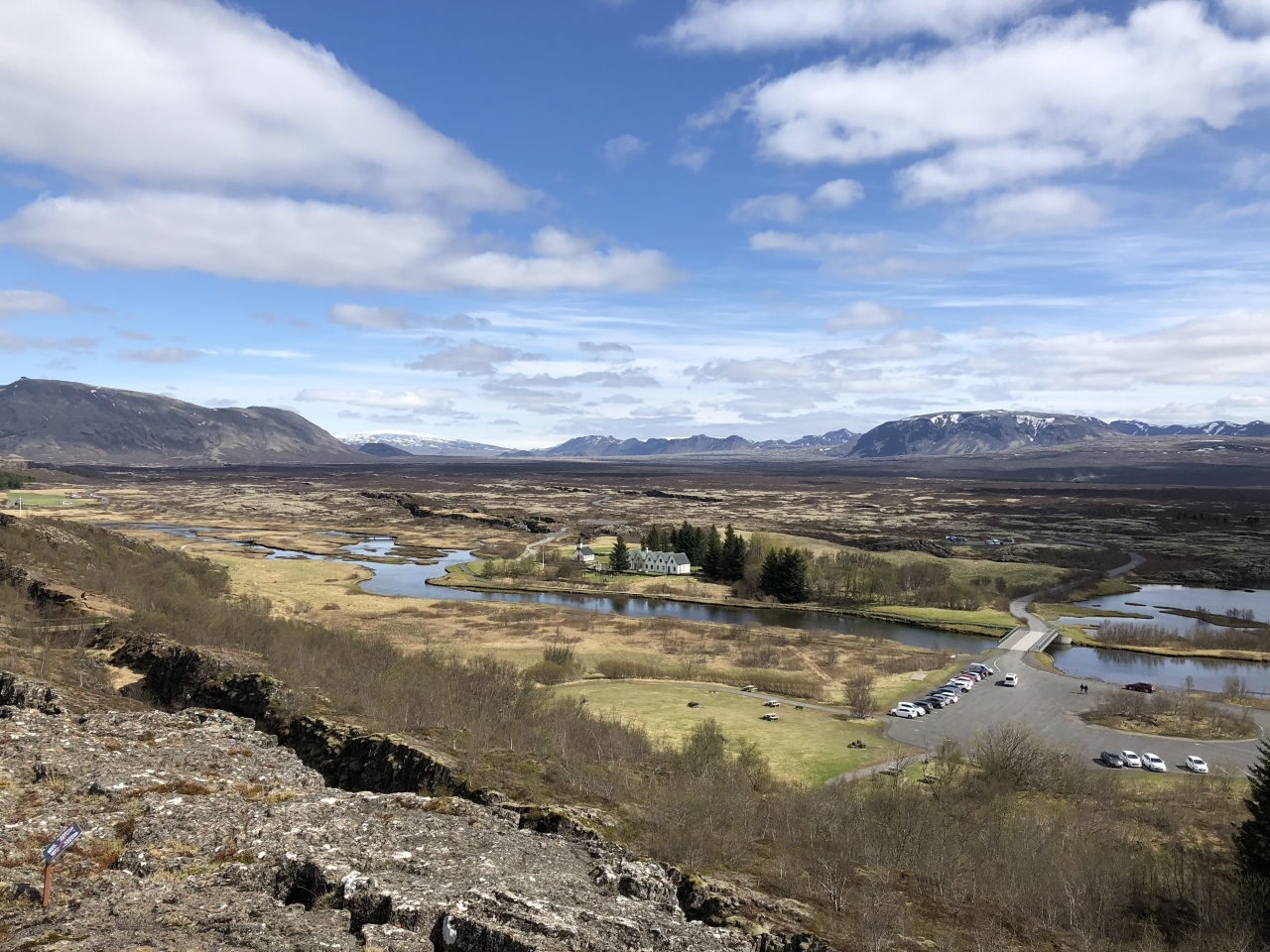 Iceland plants and landscapes 2019-05-22