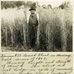 Richard Diener in Murray Field (Kentfield), 1918