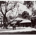 Pastori's Fairfax, circa 1913
