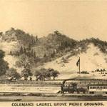 Laurel Grove Picnic Grounds, 1884