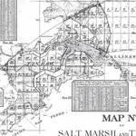 Marin Tide Lands Map No. 3, 1871. <span>©  </span>