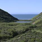 Tennessee Valley trail and Cove photographed by Brad Rippe. <span>© Brad Rippe </span>