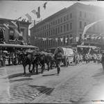View southeast on Columbus (then Montgomery Ave.) to Admission Day parade, with oxen pulling covered wagon representing San Rafael parlor of NSGW. Montgomery Block in background. SFOpenHistory/ wnp15.1391.jpg