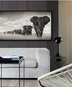 animal poster- black and white elephants