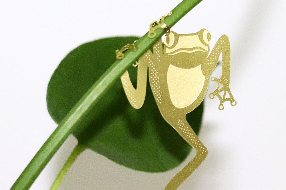 Plant Animal - Tree Frog - Plant Animal - Tree Frog