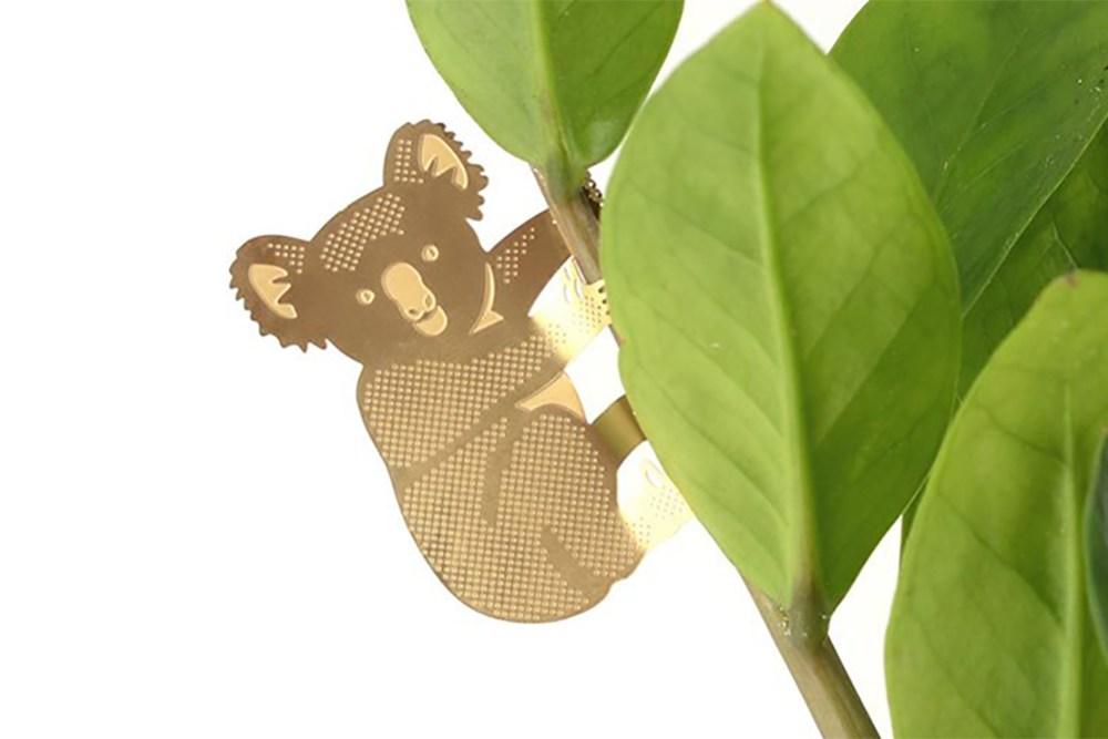 Plant Animal Koala - Plant Animal Koala