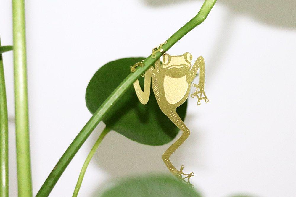 Plant Animal - Tree Frog