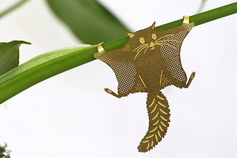 Plant Animal Ecureuil volant - alt
