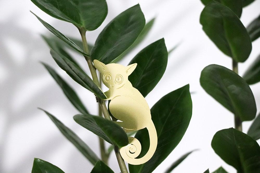 Plant Animal Galago