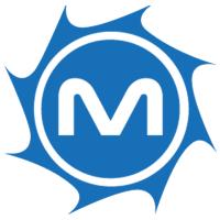MetroStar Systems Company Logo