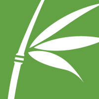 Basis Technology Company Logo