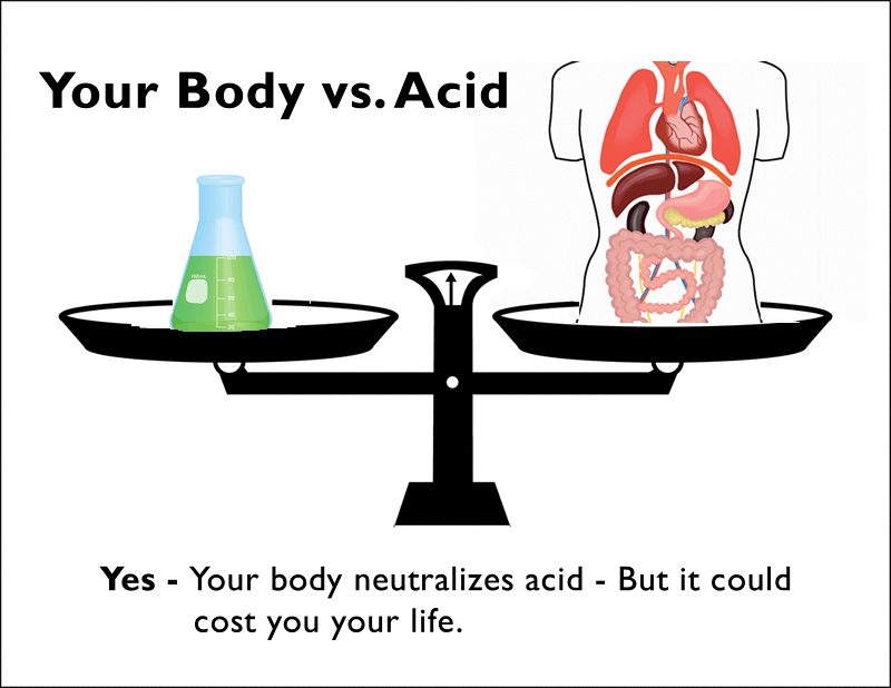 acid alkaline theory of disease infographic