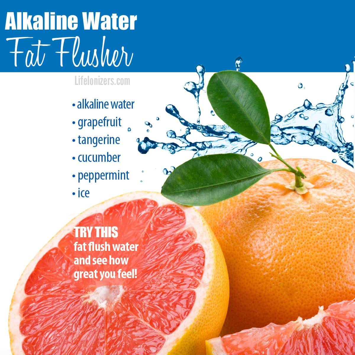 alkaline water fat flusher infographic